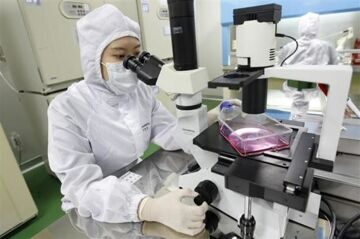 south-korea-stem-cell